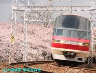サクラと名鉄2010 4