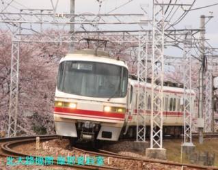 サクラと名鉄2010 5
