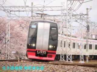 サクラと名鉄2010 6