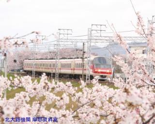 サクラと名鉄2010 9