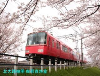 サクラと名鉄2010 10