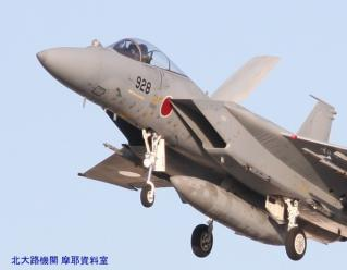 岐阜基地100303F4&F15 8