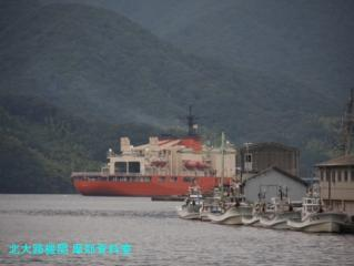 舞鶴基地 横須賀から寄港の砕氷艦しらせ出航 9