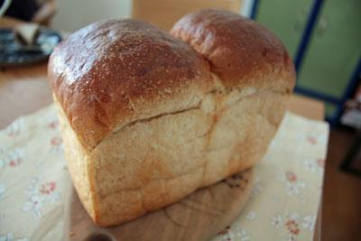 買ったパン (3)