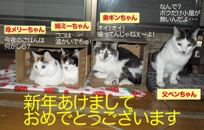 ネコちゃん全員x01年賀用ブログ