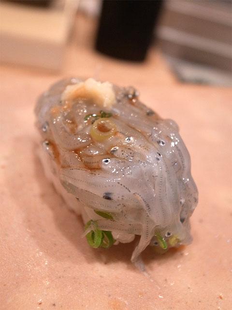 131101鮨紺乃-しらす