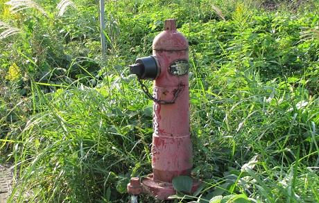 柏原駅近くで見た消火栓