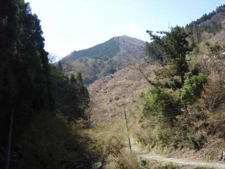 20100421-1353.jpg