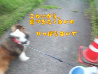 fc2_2014-09-23_16-28-37-077.jpg