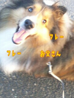 fc2_2014-10-03_11-43-55-761.jpg