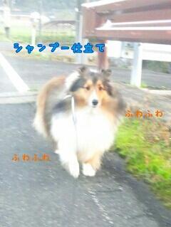 fc2_2014-10-29_09-28-13-634.jpg