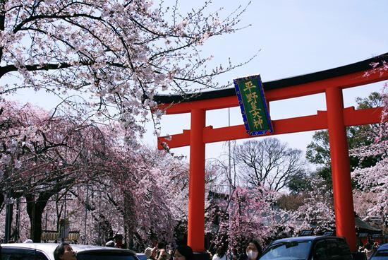 平野神社0229b_R