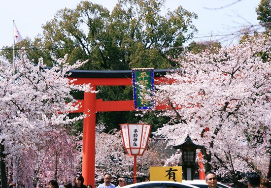 平野神社0228b_R
