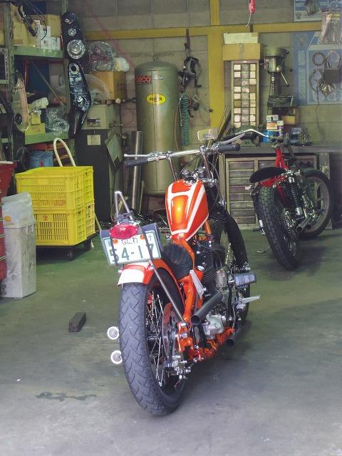 IMGP4383.jpg