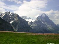 スイスの山と花