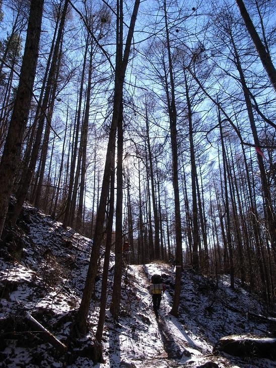西岳 (164)