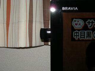 blavia08