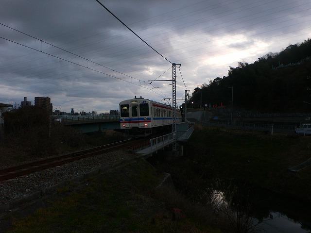 P1050456.jpg