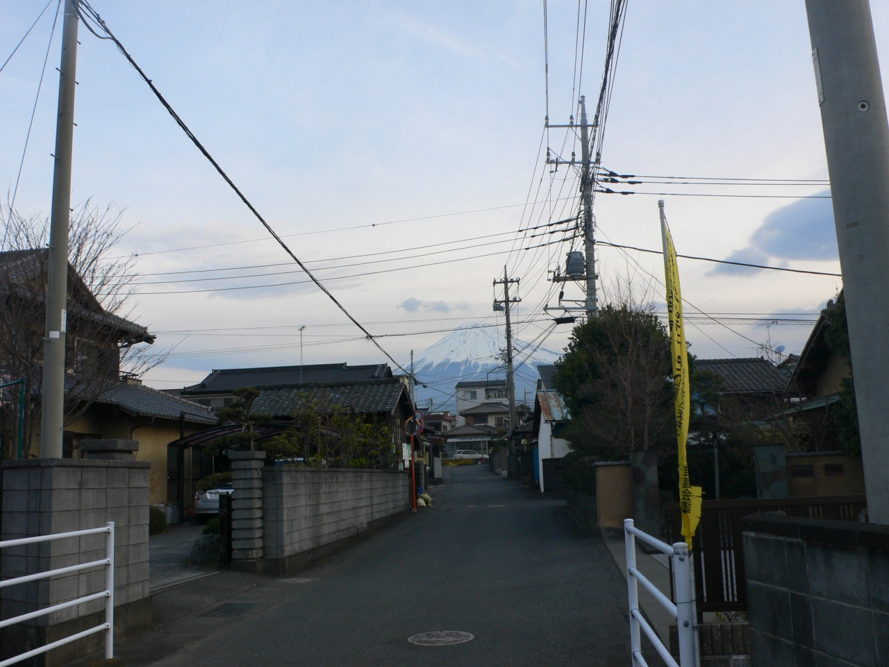 P1050962.jpg