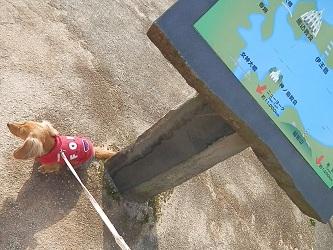 伊王島でお散歩♪