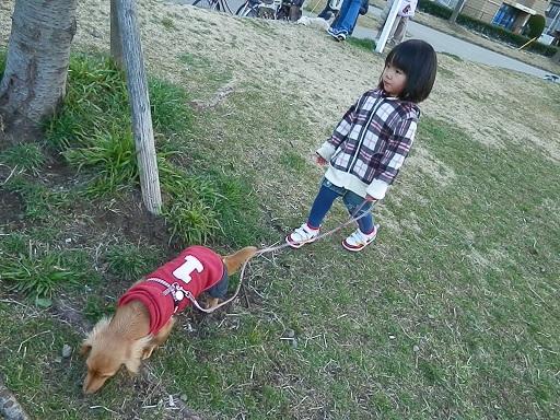 神奈川のお友達