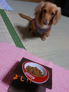 ダイエット… !?