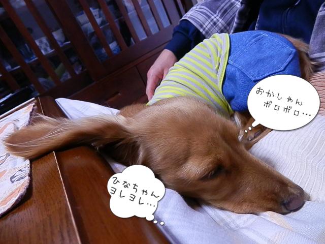 もぉ… だめ… 寝… る