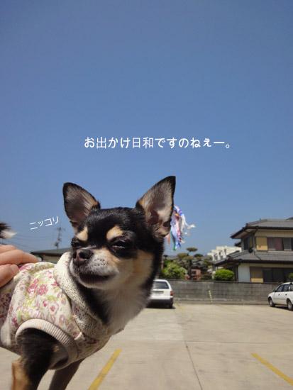 こいのぼり2
