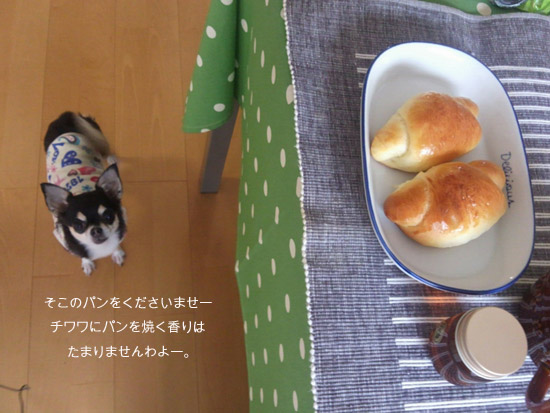 パン競争4