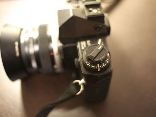 P1020503.jpg