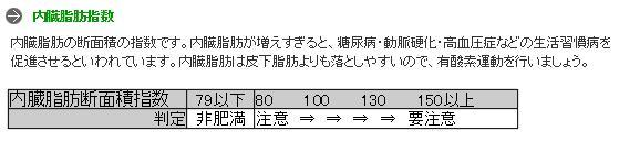 内臓脂肪指数