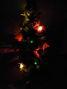 AMクリスマスツリー015