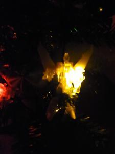 AMクリスマスツリー016