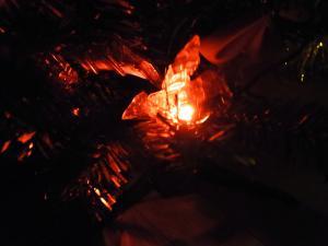 AMクリスマスツリー017