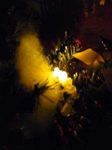 AMクリスマスツリー018