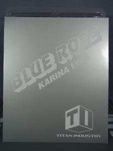 プレミアムバンダイ 魂ウェブ商店限定 TIGER&BUNNY S.H.Figuarts ブルーローズ004