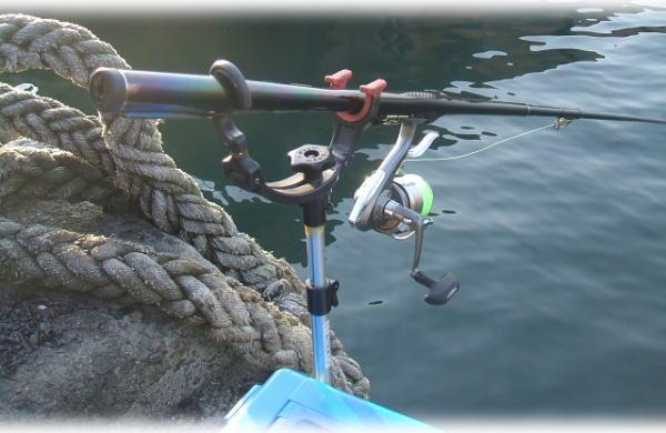 今日の釣り座♪