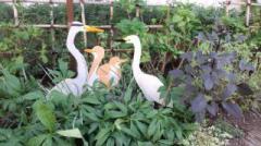 moblog_b66385efs_20120916011918.jpg