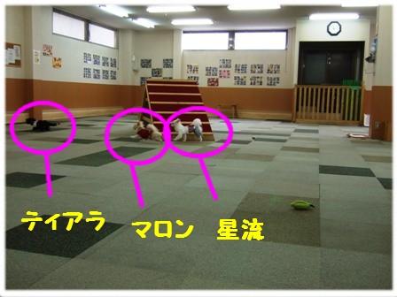 DSCF4339.jpg