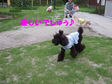 DSCF463920100721.jpg