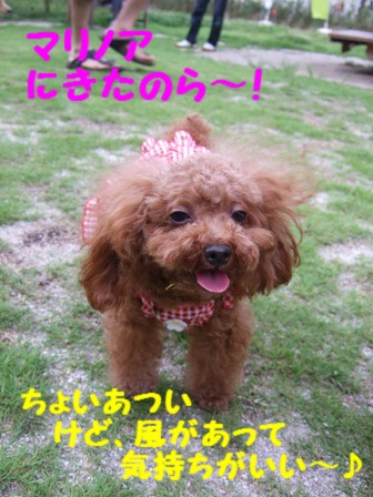DSCF464520100721.jpg