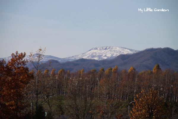 札幌岳方向
