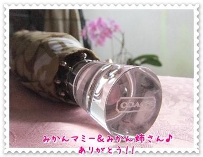 2011_0901(004).jpg