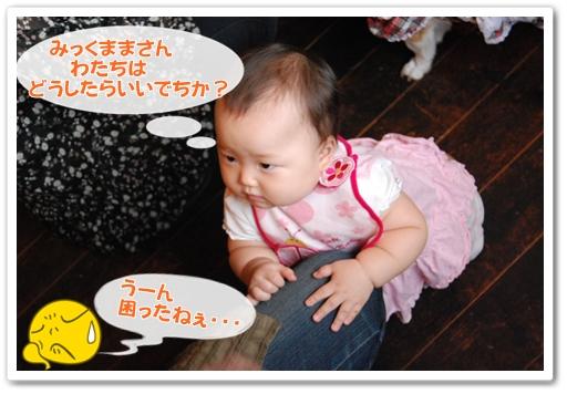 2011_0920(018).jpg