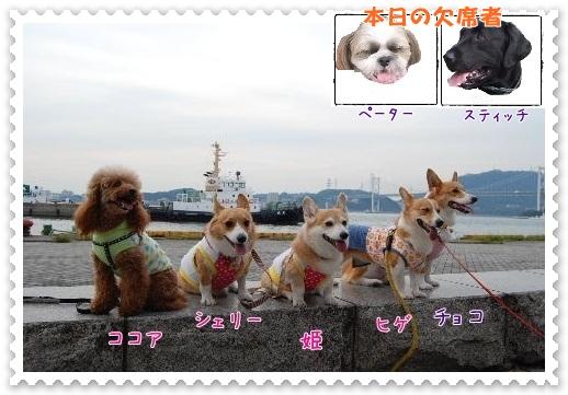 2011_0926(004)-2.jpg