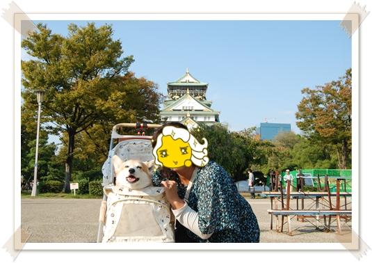 2011_1008(022).jpg