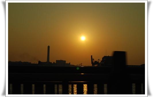 2011_1008(036).jpg