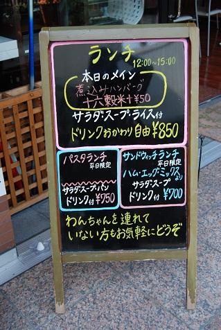 2011_1009(014).jpg
