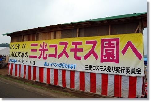 2011_1031(010).jpg