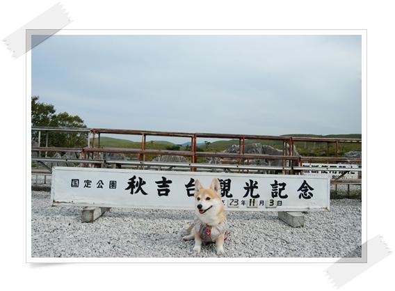 2011_1103(001)-1.jpg